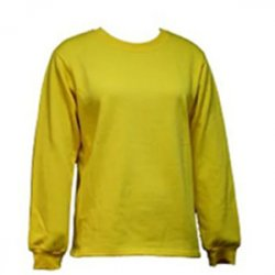 Untitled-1_0033_G. D. GOENKA SCHOOL - SWEATSHIRT ( YELLOW )