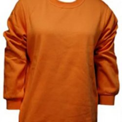 Untitled-1_0034_G. D. Goenka School - Sweatshirt ( Orange )