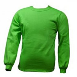 Untitled-1_0035_G. D. Goenka School - Sweatshirt ( Green )