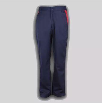 G. D. Goenka School - Boys Trousers ( Blue Strip )1